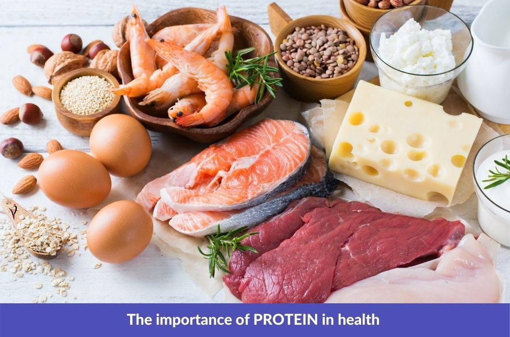 Why You Should Likely Eat More Protein